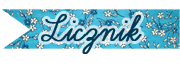 Licznik odsłon naszego bloga