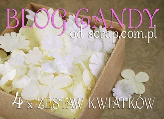 blog candy - 4 zestawy kwiatkow