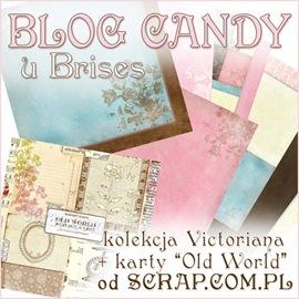 blog candy u Brises