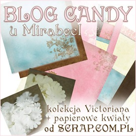 blog candy u Mirabeel