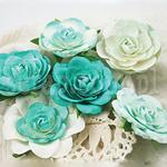 róże Prima