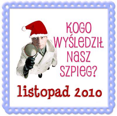 szpieg blogowy listopad 2010