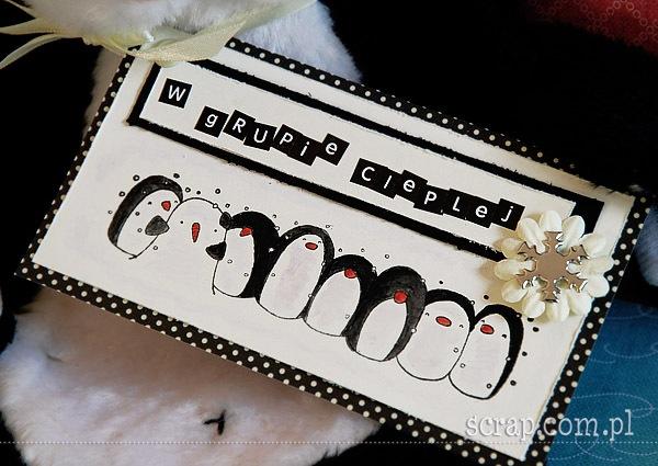pingwinek - kartka