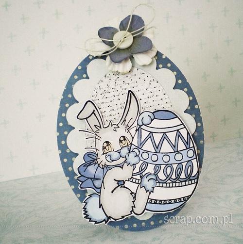 Zajaczek1