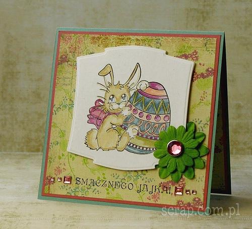 Zajaczek2