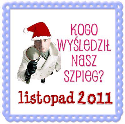 Blogowy Szpieg w listopadzie 2011