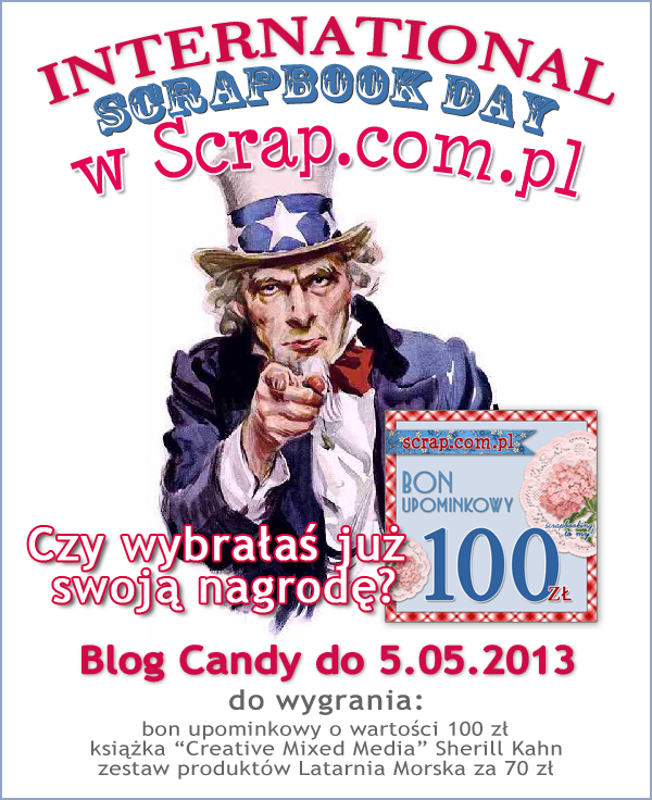NSD_2013_Vblog copy