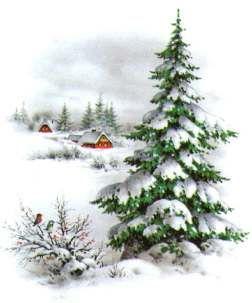 Boże Narodzenie życzenia od Scrap.com.pl