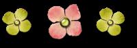 szlaczek kwiatuszki[8]