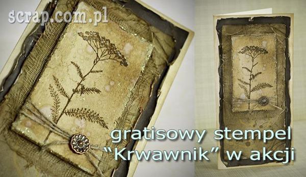 GRATIS_krwawnik_stempel_scrapbooking